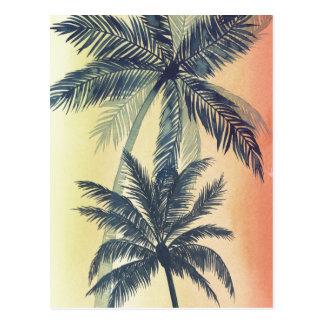 Folhas de palmeira tropicais cartão postal