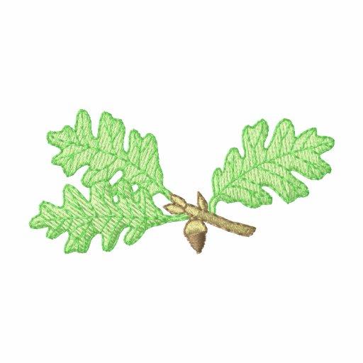 Folhas do carvalho