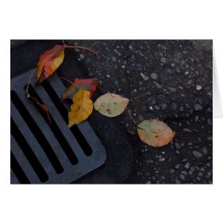 Folhas e grelha cartão de nota