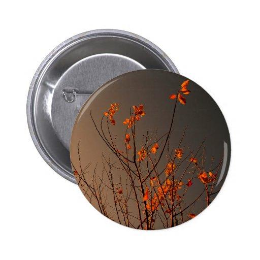 Folhas modernas elegantes da laranja em Bush Botons