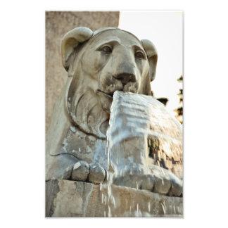 Fonte da estátua do leão fotografia