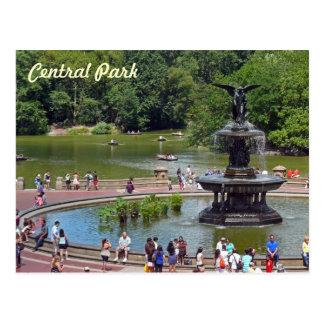Fonte e lago no Central Park, Nova Iorque Cartão Postal