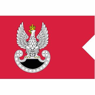 Forças especiais do Pl, Polônia Esculturafotos