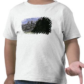 Fortaleza Incan de Sacsahuman T-shirts