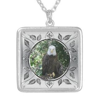 Foto americana dos animais selvagens da águia amer bijuterias