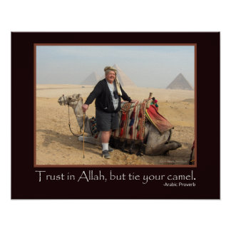Foto árabe engraçada do camelo das pirâmides de Eg Posters