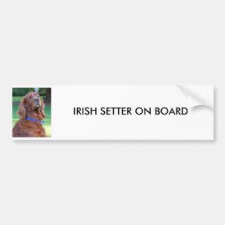 Foto bonita do cão do setter irlandês, presente fe adesivo para carro