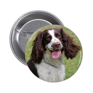 Foto bonita do cão do Spaniel de Springer inglês,  Bóton Redondo 5.08cm
