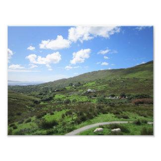Foto Campo ocidental de Ireland