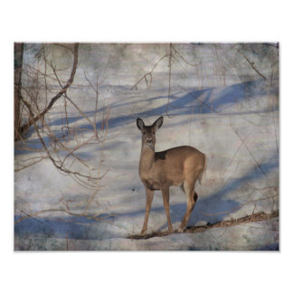 Foto Cervos na neve