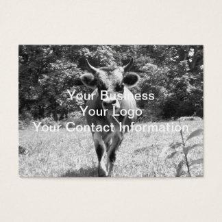 Foto cinzenta retro de Bull Cartão De Visitas