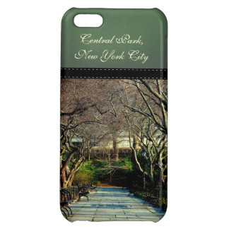 Foto conservadora da paisagem do Central Park Capas Para iphone5C