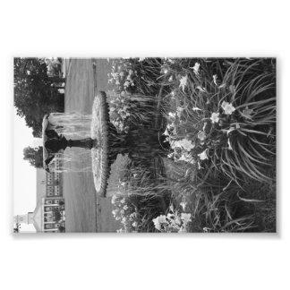Foto da fonte de água impressão de foto