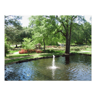 Foto da lagoa do jardim
