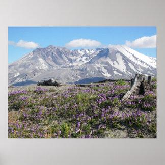 Foto da paisagem do primavera de Mount Saint Poster