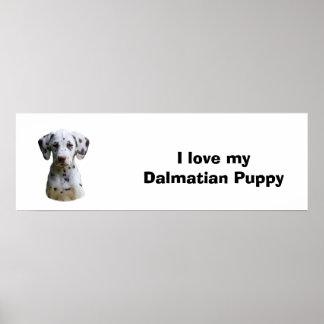 Foto Dalmatian do cão de filhote de cachorro Posters