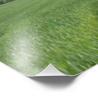 Foto de campos verdes