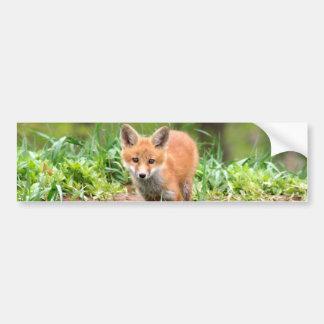 Foto do jogo adorável da raposa vermelha adesivo para carro