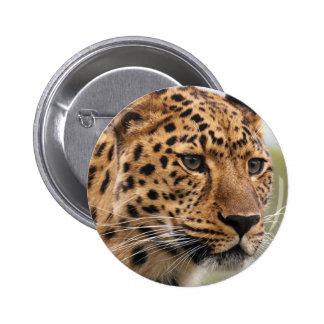 Foto do leopardo bóton redondo 5.08cm