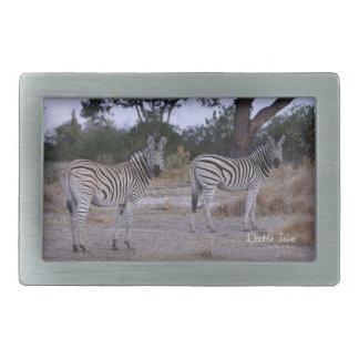 Foto do olhar duas vezes da zebra
