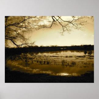 Foto do pântano posteres