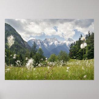 Foto do poster da paisagem da montanha (vários tam