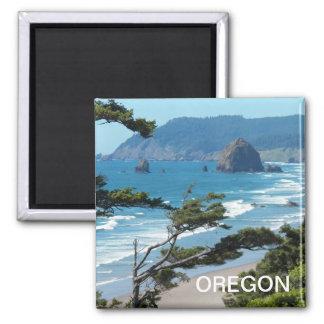 Foto do Seascape de Oregon Ímã Quadrado