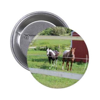 Foto dos cavalos bóton redondo 5.08cm