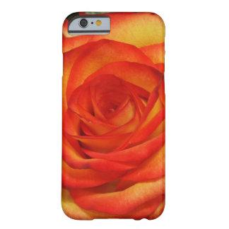 Foto macro cor-de-rosa vibrante do vermelho e do capa barely there para iPhone 6