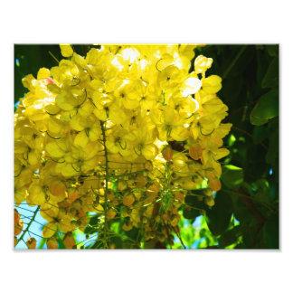 Foto Poster tropical amarelo das flores