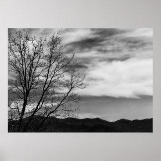 Foto preta & branca da natureza da paisagem poster
