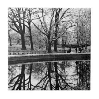 Foto preto e branco da paisagem do Central Park Azulejos De Cerâmica