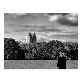 Foto preto e branco da paisagem do Central Park Cartão Postal