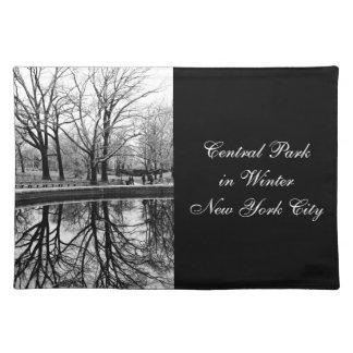 Foto preto e branco da paisagem do Central Park Suporte Para Pratos