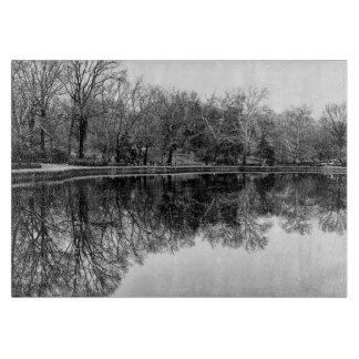 Foto preto e branco da paisagem do Central Park Tábuas De Cortar