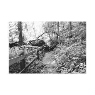 Foto preto e branco impressão em tela