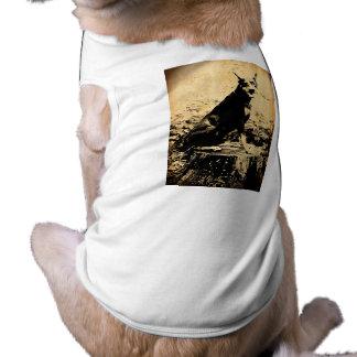 Foto velha do vintage do Pinscher do Doberman Camisa Sem Mangas Para Cachorro