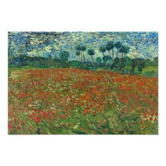Foto Vincent van Gogh - campo da papoila