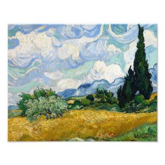 Foto Vincent van Gogh - campo de trigo com ciprestes