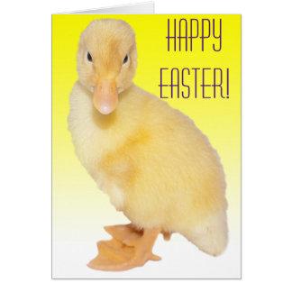 Fotografia amarela adorável do patinho cartão comemorativo