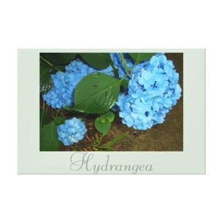Fotografia azul 2 da natureza da arte da flor do impressão de canvas esticadas