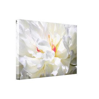 Fotografia da chama da peônia impressão em tela canvas