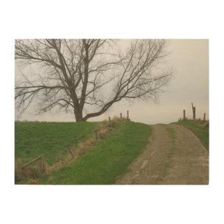 Fotografia da estrada do monte da árvore e do país impressão em madeira