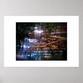 Fotografia da paisagem com árvore complicada poster