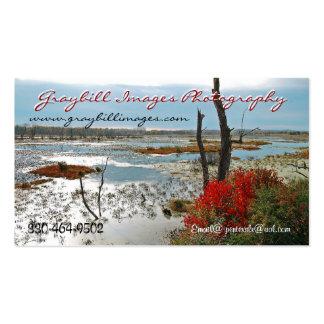 Fotografia das imagens de Graybill Modelos Cartão De Visita