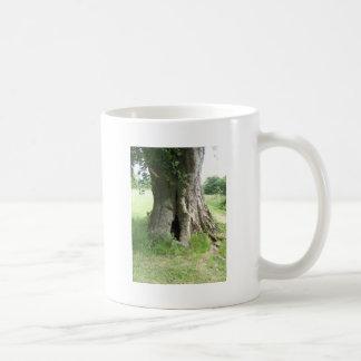 Fotografia de uma árvore canecas