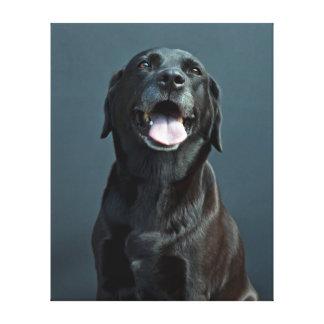 Fotografia do animal de estimação do impressão das impressão em tela