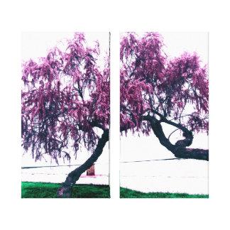 fotografia impressão em tela