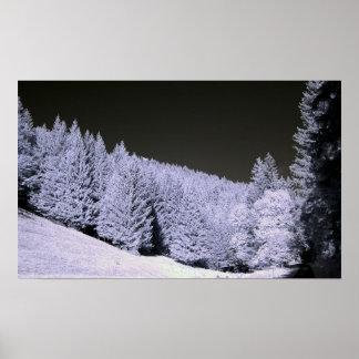 Fotografia infravermelha de uma floresta Spruce Impressão