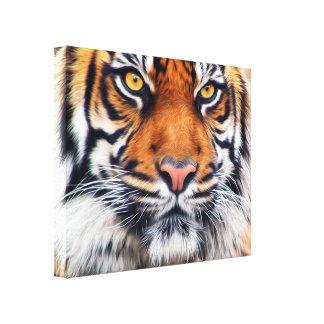 Fotografia masculina da pintura do tigre Siberian